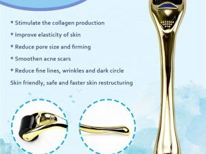 Titanium Microneedle Derma Roller 0.5mm & Ice Globes
